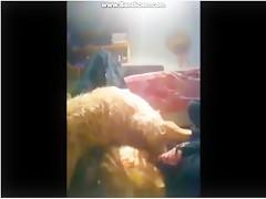Teen zooskool Biggest dog